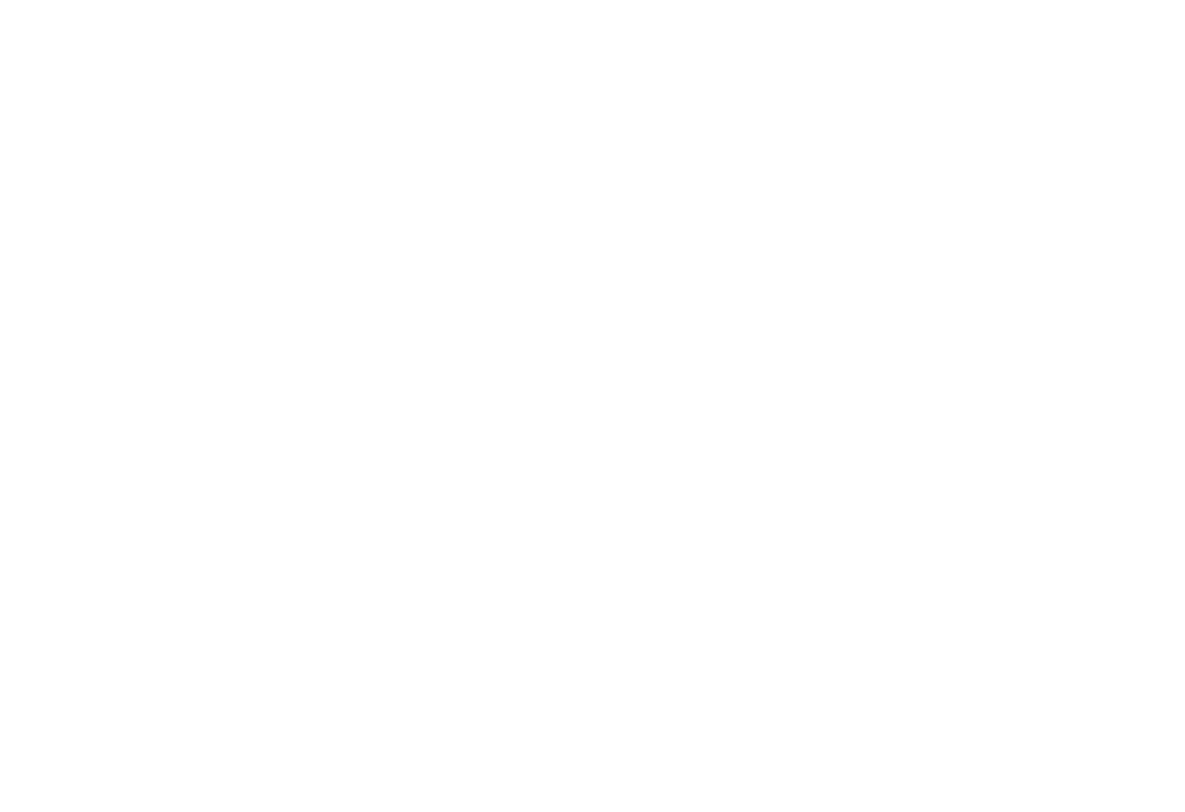 MMI Intellectual Property